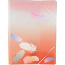 Папка на резинках А4+, Colourful Feather 04, AXENT