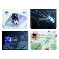 Папка на резинках А4 Optima X-RAY ассорти