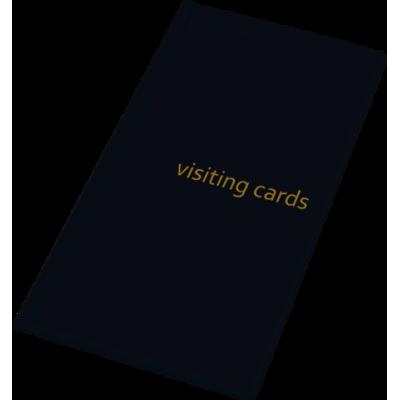 Визитница на 96 визиток PVC черный (0304-0005-01)